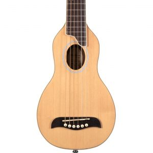 Washburn 10SK Guitar