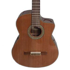 Washburn C104SCE Guitar